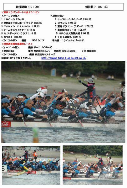 12東京大会報告書 -2_ページ_1.jpg